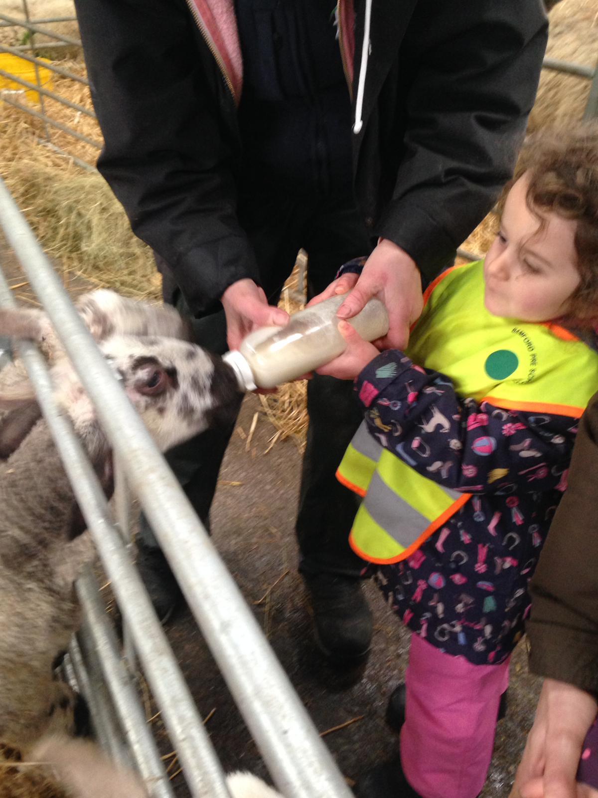 Farm visit 2