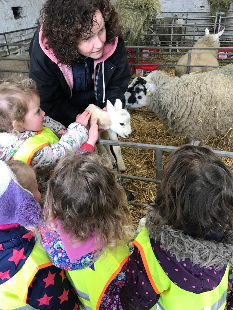 Farm visit 3